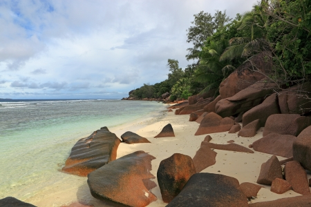 wild beach seychelles Stock Photo - 17104493