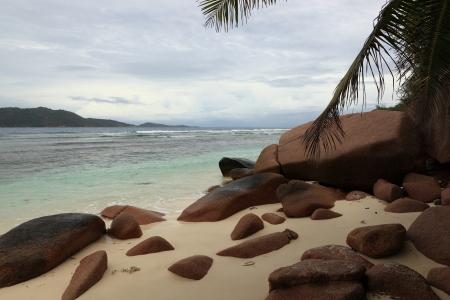 wild beach of seychelles photo