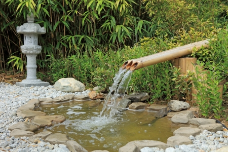 water garden photo