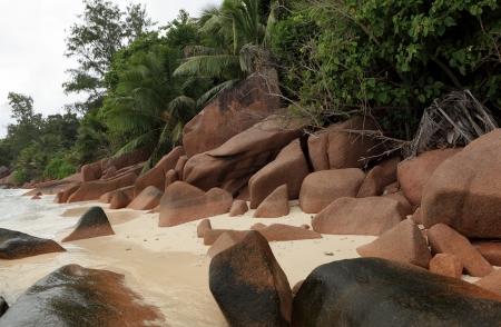 d argent: wild beach seychelles