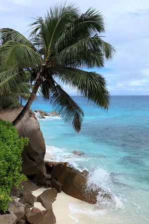 d argent: small beach seychelles