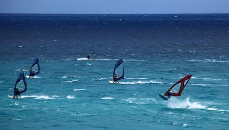 windsurfer in Canary Islands Editorial