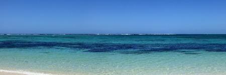 blue of mauritius