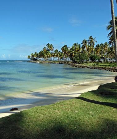 wild beach dominican republic