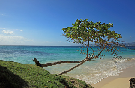 coast of dominican republic