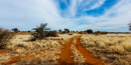 namibia: Red sand road in Namibia Stock Photo