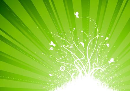 light burst: Light Burst-Hintergrund mit Gras und Blumen-Anlage Zusammenfassung