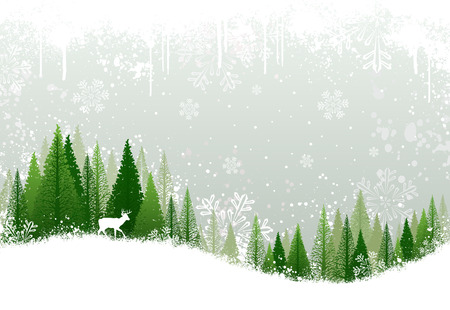 evergreen: Green and white winter forest grunge background design Illustration