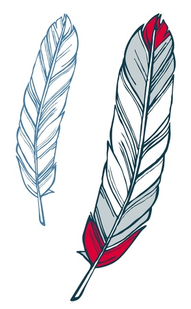 Red and blue feather hand-drawn sketch illustration Иллюстрация