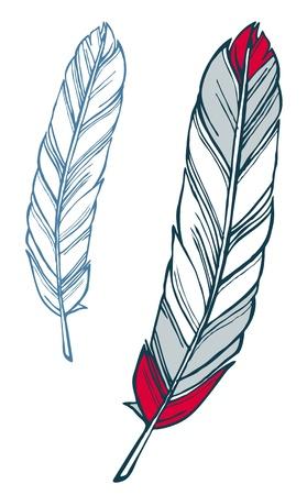 Rood en blauw veer met de hand getekende schets illustratie Stockfoto - 17381575