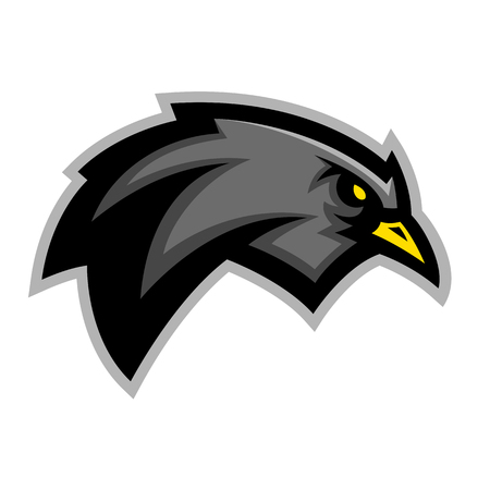 Blackbird sports emblem team mascot graphic design