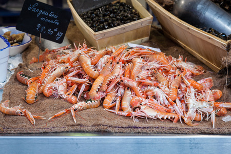 Many fresh langoustine lobsters for sale in a european fish market in France. These are healthy, raw, orange shellfish in a stall and are a delicious meal. photo