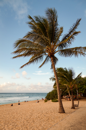 Tropical, sunny, day landscape on Sunset Beach on Oahus North Shore in Hawaii.
