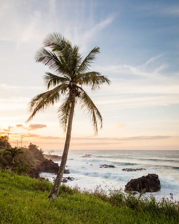 노스 쇼 어 오아후, 하와이, 미국 하리와 타운 근처 Waimea 베이 석양 열 대 해안 풍경. 스톡 콘텐츠