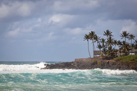 Waimea bay seascape with palm trees, cloudy sky, and rough waves from the pacific ocean.