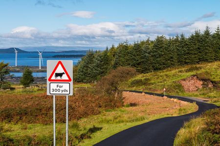 Advanced warning sign for cows over 300 yards,  A twisty farm road newly tarred & Wind turbines  on ther Clyde. Agriculture, Roads, Forestry and Renewables in one image. Archivio Fotografico