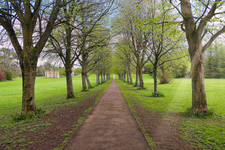 Eglinton Park in Irvine and the tree lined footpath
