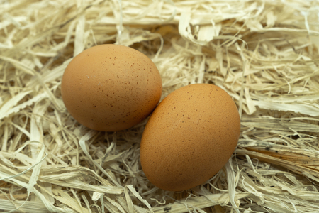 Two Fresh Eggs on a bed of straw