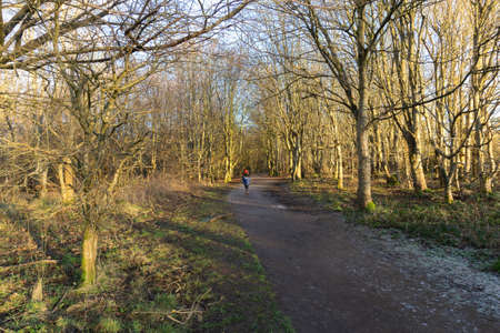 Eglinton Park in winter at the start of the year with its footpaths and stripped bare trees and a A small boy with red hat and blue anorak exploring Eglinton Country Park Irvine with its frozen walks and winter bared trees 免版税图像