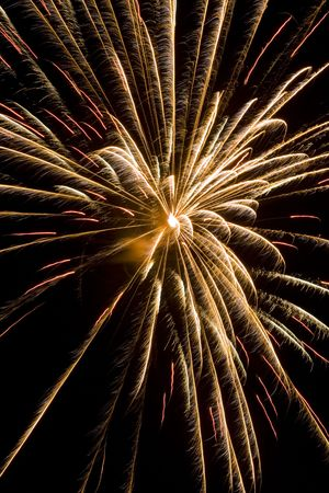 Red firework burst that looks like palm fronds Stock Photo - 1358333