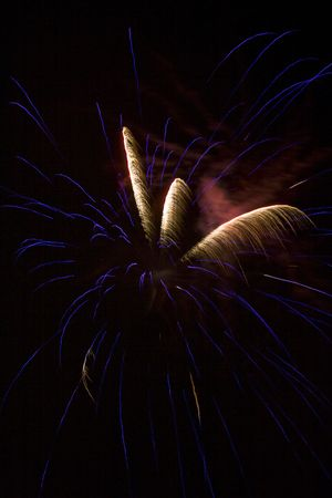Blue explosion with several white palm frond trails photo