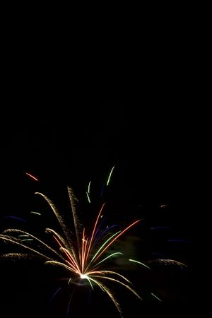 rupture: Bird fo paradise firework burst in lower left