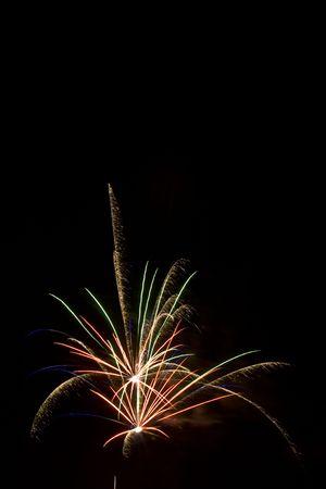 rupture: Multi Bird of paradise firework blasts in the night sky Stock Photo