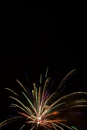 Multi Bird of paradise firework blasts in the night sky Stock Photo - 1358297