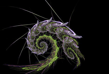 nautilus shell: Fractal flame suggesting the form of a spiny nautilus shell