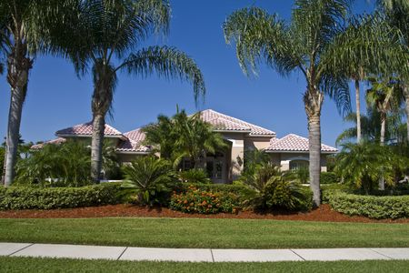 House hiding in landscaping and  palm trees from street showing lawn and sidewalk