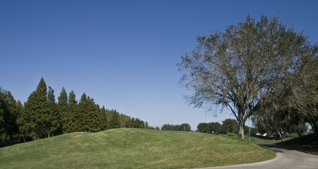 Grasachtig kleine heuvel op een golfbaan met bomen