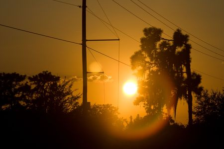 shadowed: Golden glow sunset halo with silhouetted treeline Stock Photo