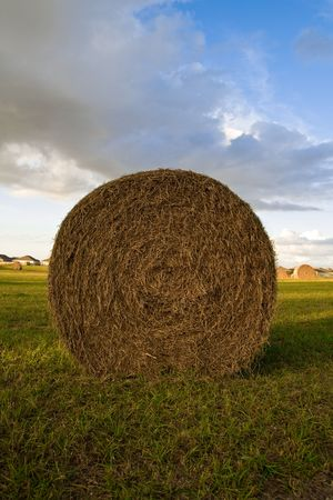 Roll type bale of hay sitting in a field against cloudy sky Stock Photo - 2430216