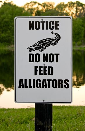 Sign warning not to feed alligators (it is actually illegal) Banco de Imagens - 3007365