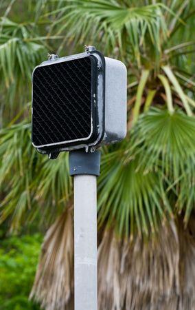 손바닥 나무의 배경 신호 신호에 얕은 DOF 초점 크로스 도보 신호