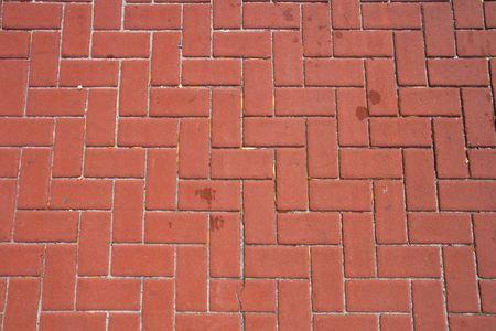 intresting: Paver bricks with an intresting interlocking pattern