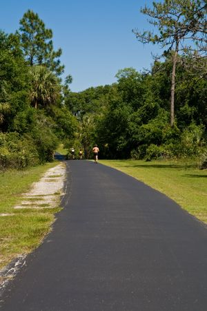 road and path through: Curving bike path crossing through the woods Stock Photo
