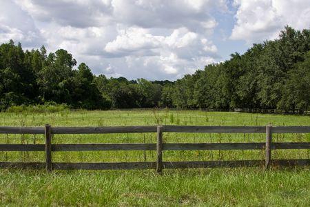 バック グラウンドで木と木製のフェンスの背後にある芝生のフィールド