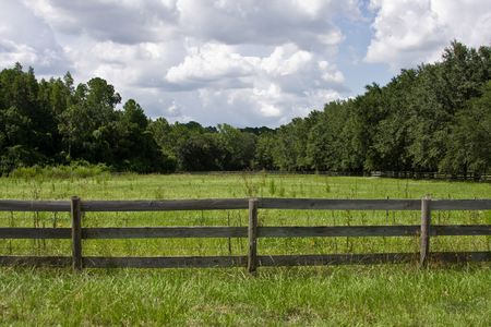 pasture fence: Grassy field behind wooden fence with trees in background