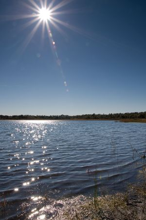 lensflare: Sun with lens flare over a lake with small bit of shore in corner
