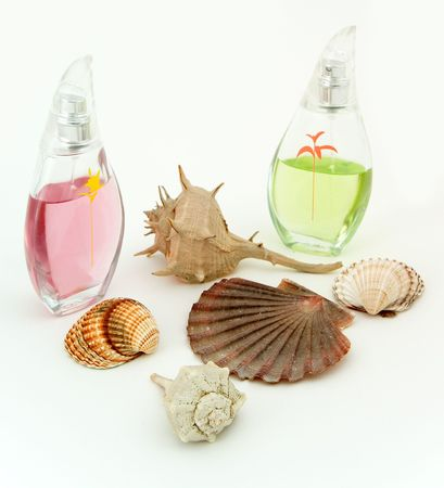 parfume: parfume with shells Stock Photo