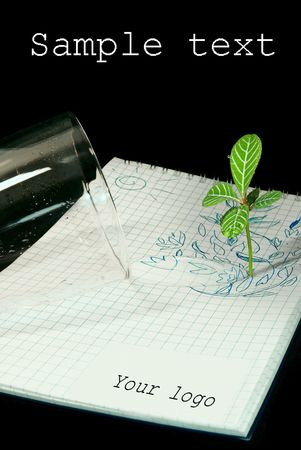 transforms: Casually poured water from a glass transforms drawing into a live plant