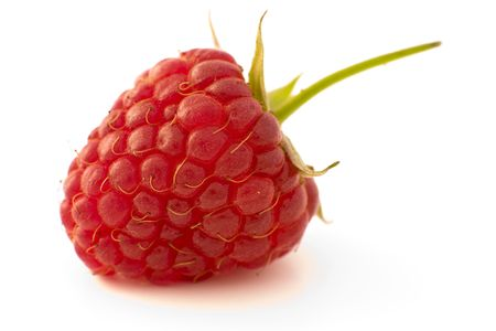 Raspberry fruit with stem and leaves