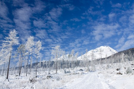 landsape: Snowy winter landsape, Slovak republic Stock Photo