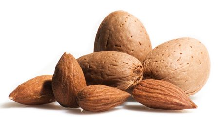 nut shell: almonds