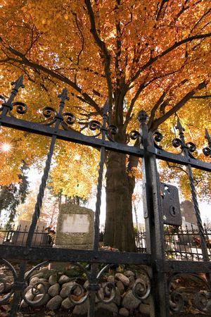 rejas de hierro: Antigua tumba en el cementerio