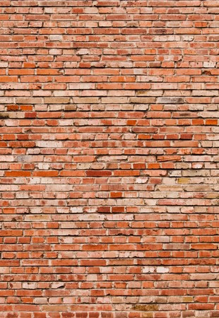 Olde Brick Wall Stock Photo - 7445590