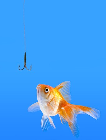 Goldfish looking to the fishhook Stock Photo - 9757241