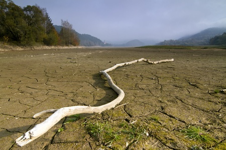 globalwarming: A lake  dries up during a drought.