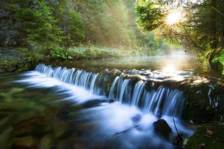 slovakia: Flusso di fiume con rocce nella foresta.
